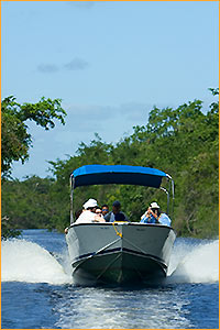 Jungle River Cruise - Ecological Tours Services - Belize