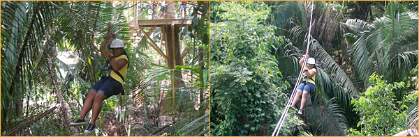 Zipline with Ecological Tours Service - Belize